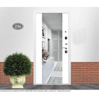Белые двери с зеркалом (10)